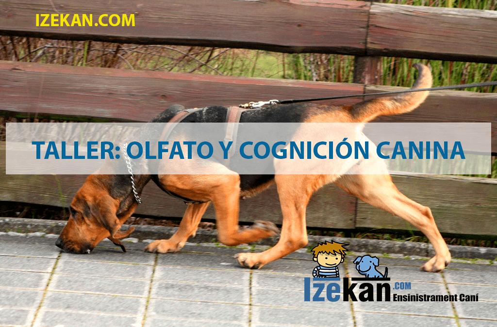 Taller Olfato y cognición canina