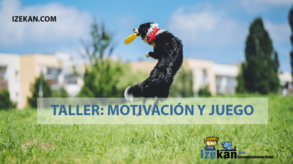 Taller: Motivación y juego