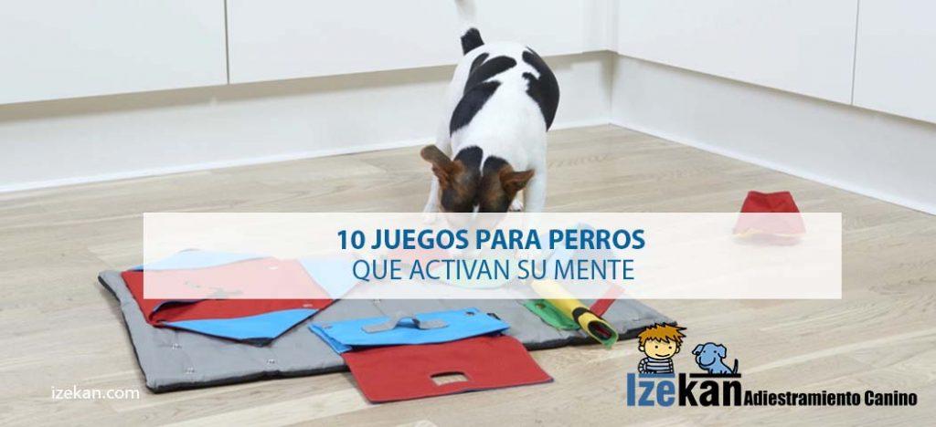 los mejores juegos estimulantes para perros